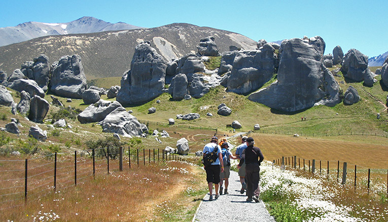 Wnzq-new-zealand-walking-2